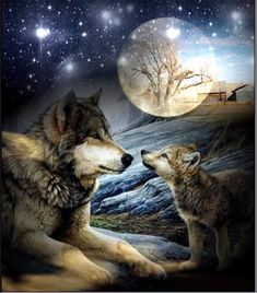 NIHAI DIY Diamond Painting Kit, Wolf and Night Moon Full Drill Diamond Painting Rhinestone Embroidery Cross Stitch Arts Craft Canvas for Bedroom Home Wall Decor (G) Wolf Photos, Wolf Pictures, Beautiful Wolves, Animals Beautiful, Wolves In Love, Baby Wolves, Tier Wolf, Animals And Pets, Cute Animals