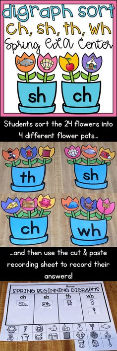 This flower spring themed digraph sort helps student practice distinguishing between the ch, sh, th and wh sounds using pictures. This center includes 4 flower pots, 24 picture flowers (6 per sound) and a cut and paste recording sheet! Makes a great addition to any Kindergarten or 1st grade ELA/Literacy center!