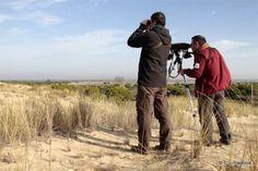 Aumenta el número de visitantes a las Lagunas de Villafáfila http://www.revcyl.com/web/index.php/medio-ambiente/item/8788-aumenta-el-nume