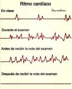 New Medical Jokes Hilarious Truths Ideas Funny Spanish Memes, Spanish Humor, Stupid Funny Memes, Hilarious, Medical Jokes, Best Memes, Instagram, Random, Student Quotes