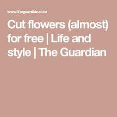 Cut flowers (almost) for free | Life and style | The Guardian