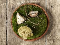 Noma put Copenhagen on the map, repeatedly winning honors as the best restaurant in the world. It focuses on extremely local ingredients, many foraged from the ocean or forest. Diners may be served sea urchin toast, moss or even ants.