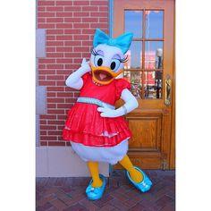 衣装もよく見るとキラキラしてて可愛い #デイジー #デイジーダック #かわいい #ディズニー #ディズニーランド #カリフォルニアディズニー #キャラグリ #アメリカ #アナハイム #ダイヤモンドセレブレーション #一眼レフ #カメラ #キャノン #DaisyDuck #Disney #DisneyCalifornia #Disneyland #charactergreeting #America #USA #Anaheim #DiamondCelebration #D60 #Disneyland60 #Canon #singlelensreflexcamera #SLR #camera by xxuyasimxx