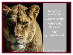 Entdecke Deine Löwenkraft.  http://chayns.net/64943-18678/ticker/tickernode/14328599