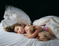 #photography #cat #sphynx #robin #schwartz