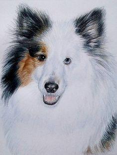 HandDrawn Custom Pet Portrait 8 x 10 Colored by CarlaKurtArt, $125.00