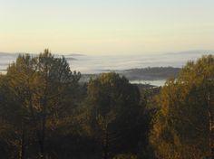 Las frías mañanas del invierno dejan a menudo aplastadas a las nubes contra el embalse de Gabriel y Galán y los llanos del Río Ambroz. Es entonces el momento de subir a algún altozano del pinar de Granadilla para fotografiar el mar de nubes.