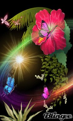 Download Animated 240x400 «butterfly» Cell Phone Wallpaper. Category: Flowers