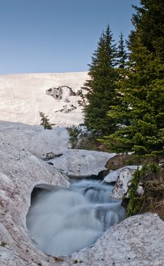 When I was coming back down from Lake Isabelle I could hear the roar of rushing water. Not exactly a great picture, but a cool scene just the same. View Larger On Black Great Pictures, Wilderness, Colorado, Waterfall, Scene, Indian, Explore, Mountains, Spring