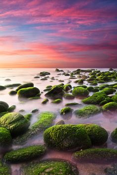 "red and green  ""Color harmony"" by Jorge Maia"