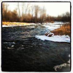 Creek in Absarokee, MT. ~Dan Gruber