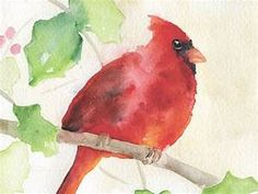 Cardinal Holly Watercolor Christmas Card Set of 10
