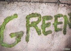 Evde Hazırlayabileceğiniz Aşırı Basit Karışımla Duvarlardaki Yeni Trend: 'Yosun Grafiti'