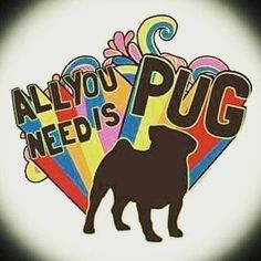 Million Pugs — I freaking love this. #pug #pugs #pugsofinstagram...