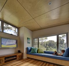 Seal Rocks Shack | Nathan Gibson Architects Plywood Interior, Plywood Walls, Plywood Ceiling, Wood Ceilings, Timber Panelling, Timber Flooring, Activity Room, Ceiling Panels, Raked Ceiling
