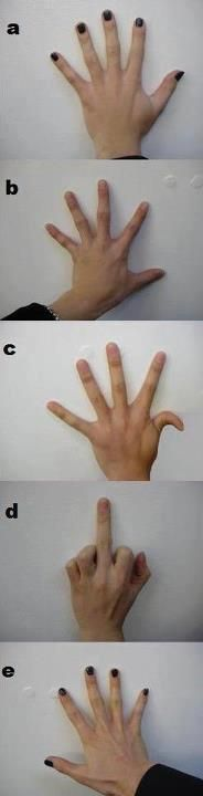The GazettE hands. A) Aoi B) Kai C) Reita D) Ruki E) Uruha