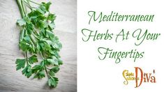 I love to use fresh herbs when I am cooking! When I started looking at the types of herbs I use on a regular basis, I realized they all were herbs found in the Mediterranean climate! Easy Garden, Garden Ideas, Types Of Herbs, Mediterranean Garden, Fresh Herbs, Simple, Landscaping Ideas, Backyard Ideas