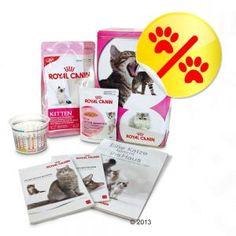 Royal Canin Kitten Zestaw startowy