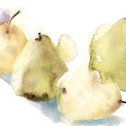 KO.93 pears