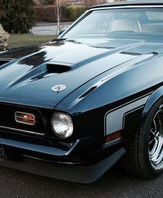 1971 Mustang Mach 1, Roush Mustang, Ford Mustang Shelby Cobra, Mustang Lx, Fox Body Mustang, Mustang Fastback, Mustang Cars, Ford Mustangs, Shelby Gt500