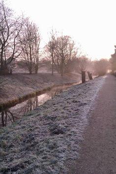 Frost am Niederrhein