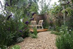 Wild in the City Hampton Court Flower Show, Building Design, Yard, Patio, City, Outdoor Decor, Flowers, Inspiration, Home Decor