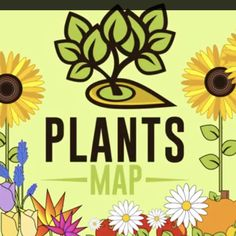 93 Best Plants Map: About Us images in 2018 | Balsam fir, Beet seeds