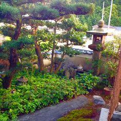 まさに侘び寂びの京都。美しいです