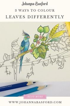 Color Pencil Drawing 3 ways on how to colour leaves in the adult colouring book Johanna Basford Magical Jungle Coloring Book Art, Coloring Tips, Colouring Pages, Adult Coloring Pages, Adult Colouring In, Colouring Pencils, Colored Pencil Tutorial, Colored Pencil Techniques, Jungle Drawing