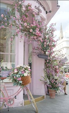 Romantic pink shabby chic cottage / bicycle, flowers, street photography