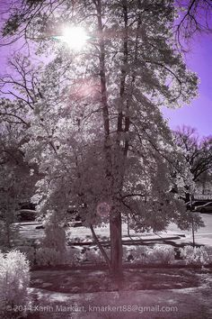 Infrared photography with IR converted Nikon D40, quick post processing with Lightroom and Photoshop.