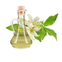 How to make jasmine oil. Jasmine is considered one of the most . Beauty Care, Diy Beauty, Jasmine Oil, Esential Oils, Home Spa Treatments, How To Make Oil, Infused Oils, Medicinal Herbs, Natural Cosmetics