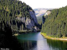 Cheile Tatarului alcătuiesc o arie protejată de interes național ce corespunde categoriei a IV-a IUCN (rezervație naturală de tip mixt) situată în județul Dâmbovița, pe teritoriul administrativ al comunei Moroeni. River, Outdoor, Outdoors, Outdoor Games, The Great Outdoors, Rivers