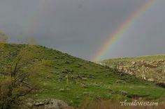 Stunning Rainbows www.reidlancerosenthal.com