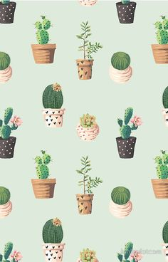 Cactus Patterned Wallpaper