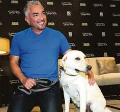 Relationship, not breed is what counts - Cesar Millan