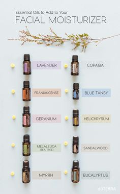 Essential oils for skincare. Oils to use on your face. Doterra essential oils to add to your face oil Essential Oils For Face, Essential Oil Uses, Essential Oil Diffuser, Blue Tansy Essential Oil, Sandalwood Essential Oil, Elixir Floral, Aromatherapy Oils, Melaleuca, Doterra Essential Oils