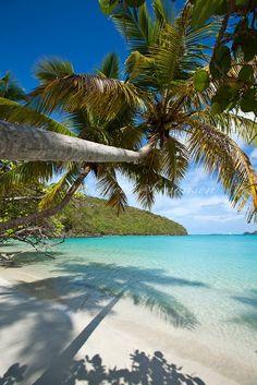 Maho Bay, St. John, USVI... One of my favorites! #Caribbean #USVI