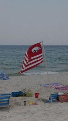 Arkansas Razorback On the Beach