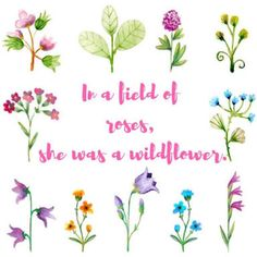 Wildflower...