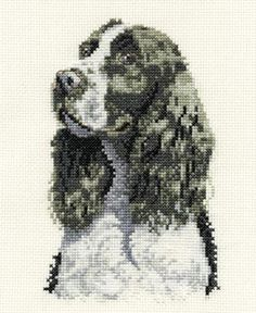 Springer Spaniel Cross Stitch Kit from DMC