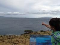 Maalaea thingtodo: Whale Watching at Papawai Scenic Lookout