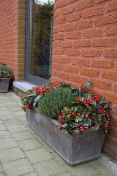 Jardini re d 39 hiver jardin pinterest jardini res for Jardiniere exterieur hiver