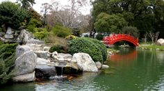 Jardin Japones, translates to Japanese gardens