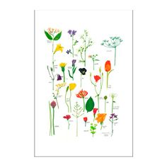 IKEA - BILD, Poster, Flowers in bloom flowers in bloom, Motif created by Sara Fager. You can personalise your home with artwork that expresses your style. Kallax, Picture Wall, Picture Frames, Framed Wall Art, Wall Art Prints, Shabby Chic Home Accessories, Ikea Family, Family Room, Chic Nursery