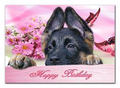 Happy Birthday Card German Shepherd