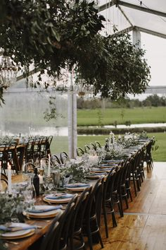 Walnut bentwood chair, vintage timber trestle table, clear marquee