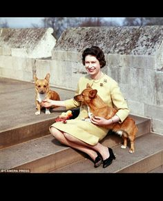 On September 9 Queen Elizabeth II will become the longest reigning monarch in British history. Which Queen are you? The Coronation Queen, Young Mum Queen, Dog Loving Queen or Empire Queen? Princess Elizabeth, Queen Elizabeth Ii, Princess Margaret, Queen Elizabeth Quotes, Elizabeth Friends, Weird Facts, Fun Facts, Reine Victoria, Die Queen