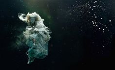 """Zena Holloway """"Maidon Voyage"""" 2012  from editorial in Financial Times 'How to Spend It'"""