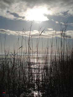 Balaton, Hungary Summer Winter, How Beautiful, Countryside, Tourism, Photographs, Earth, Sky, Landscape, World